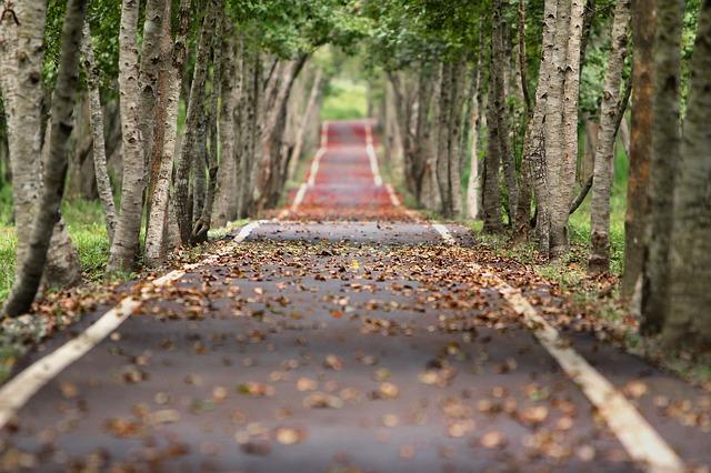 Coraz bezpieczniej na polskich drogach